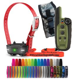 Garmin sport pro handheld and PT10 collar