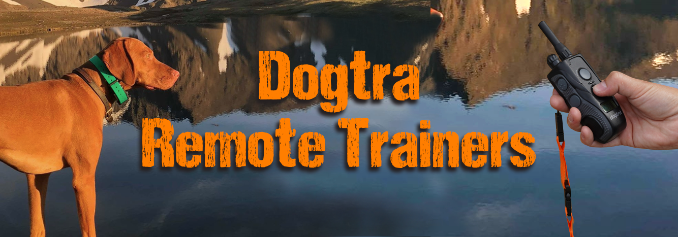 Dogtra Remote Trainers